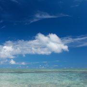 猿島海水浴場 混雑