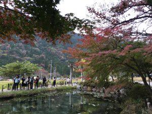 モネの池 紅葉