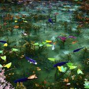 モネの池 周辺