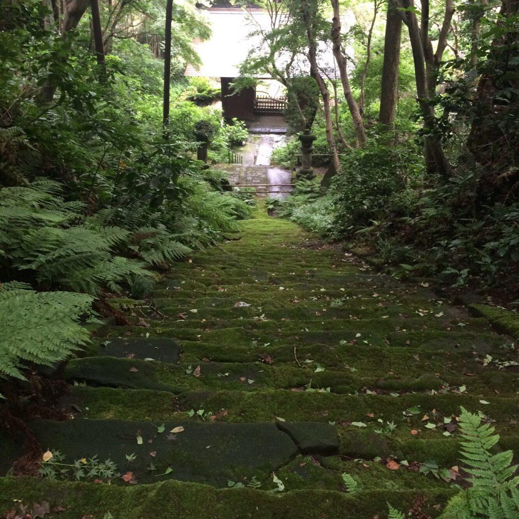 苔寺 鎌倉 妙法寺