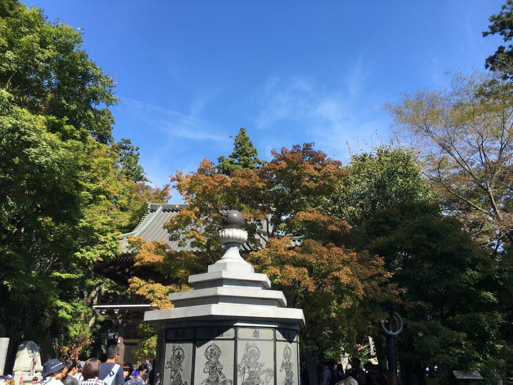高尾山 10月
