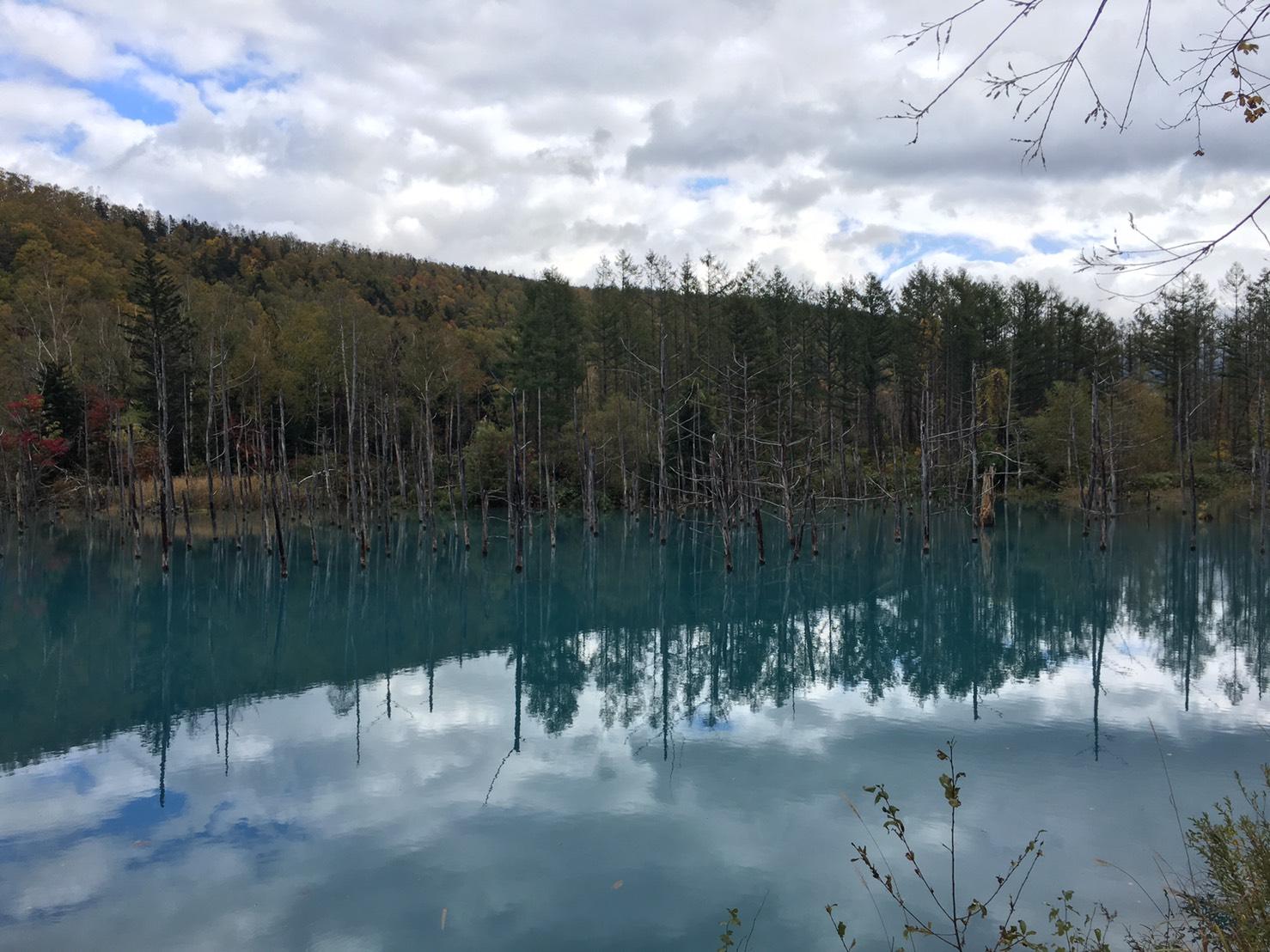 青い池 雨